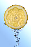 stäng upp citronen royaltyfria bilder