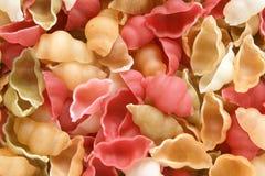 stäng upp kulöra italienska pastasnäckskal Royaltyfria Bilder