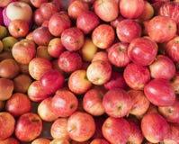 Stäng upp många det nya röda äpplet på marknaden Fotografering för Bildbyråer