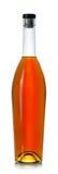 Stängd flaska av konjak royaltyfri fotografi