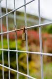 Stängd hänglås som låsas på ett fyrkantigt metallstaket - lodlinje Royaltyfria Bilder