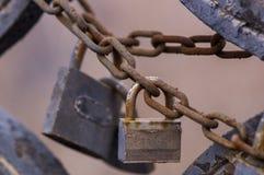 stängd padlock Royaltyfria Bilder