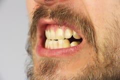 Stängda mänskliga tänder grinar, closeupen, sidosikt royaltyfri bild