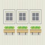 Stängda Windows med krukväxter under Royaltyfria Bilder