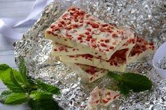 Stänger av vit choklad med den torkade jordgubben Royaltyfri Foto