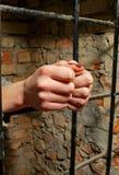 stänger bak handkvinna Royaltyfri Foto