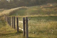 Stängerna av staketet på en äng Fotografering för Bildbyråer