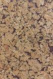 Stängt upp av bakgrund för textur för brunt bräde för kork wood abstractpattern med lilor royaltyfria foton