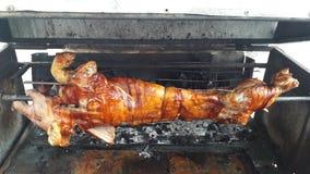 Stängt upp BBQ grillat griskött på brand som är klar till matställen arkivfoton