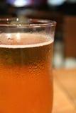 Stängt upp ett exponeringsglas av kylt ljust öl med kondensation, med den selektiva fokusen royaltyfria bilder