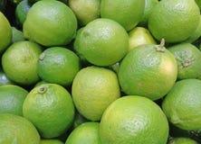 Stängt upp hög av ljust - gröna mogna limefrukter med stammen Arkivbild