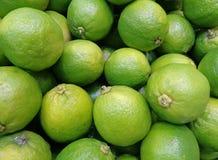 Stängt upp högen av vibrerande gröna mogna limefrukter med stammen Arkivbilder