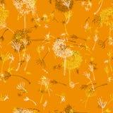 Stärka orange maskrosor royaltyfri illustrationer
