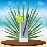 Stärkande coctail för gin på det träklassiska magasinet stock illustrationer