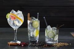 Stärkande coctailar för gin med den lima gurkan och grapefrukten Royaltyfria Bilder