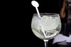 Stärkande Gin Cool Beverage fotografering för bildbyråer