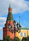 Stå hög av Moscowen Kremlin Royaltyfri Fotografi