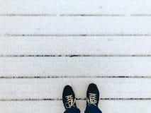 Stå på farstubron i snön arkivbild