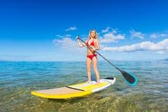 Stå upp skoveln som surfar i Hawaii Fotografering för Bildbyråer