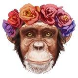 Stående av apan med den blom- head kransen royaltyfri illustrationer