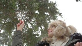 Stående av att le kvinnan som tycker om vintertid Royaltyfri Bild