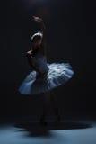 Stående av ballerina i baletttatu på dack Arkivfoton