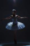 Stående av ballerina i baletttatu på dack Arkivbilder