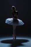 Stående av ballerina i baletttatu på dack Royaltyfria Foton