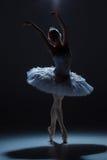 Stående av ballerina i baletttatu på dack Arkivbild