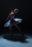 Stående av ballerina i baletttatu på dack Royaltyfri Bild