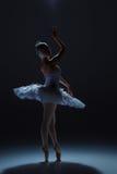 Stående av ballerina i baletttatu på dack Arkivfoto