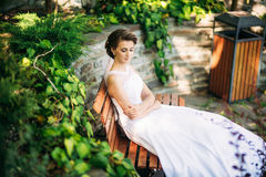 Stående av bruden i parkera bröllop för klänningfragmentbeställning solig dag  Royaltyfria Foton