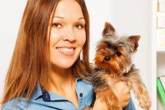 Stående av bruna Yorkshire Terrier och kvinna Arkivbild