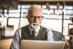 Stående av den allvarliga höga affärsmannen som arbetar på bärbara datorn royaltyfri foto