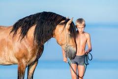 Stående av den allvarliga unga ryttaren med hästen i solnedgång Royaltyfri Bild