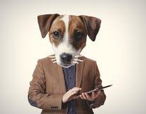 Stående av den anthropomorphic hunden med minnestavlan arkivfoto