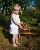 Stående av den blonda flickan med röda äpplen Arkivbilder