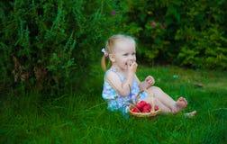Stående av den blonda flickan med röda äpplen Royaltyfri Bild