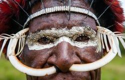 Stående av den Dani stammen i en härlig huvudbonad som göras av fjädrar Arkivfoto