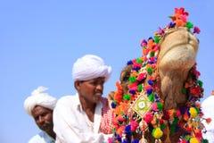 Stående av den dekorerade kamlet med cameleers i bakgrund, Jaisal royaltyfria foton
