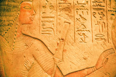 Stående av den forntida egyptiern Riy sparad av det Neues museet Royaltyfri Fotografi