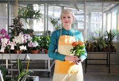 Stående av den gladlynta blomsterhandlaren Royaltyfri Fotografi