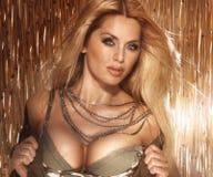 Stående av den sexiga blonda kvinnan med det stora bröst. Royaltyfri Bild