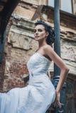 Stående av den härliga bruden. Bröllopsklänning. Tappninggarnering Royaltyfri Bild