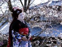 Stående av den härliga damen i Maiko kimonoklänning Royaltyfri Fotografi