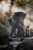Stående av den härliga lantliga thai thai klänningen för kvinnakläder med elefanten i Chiang Mai Arkivbild