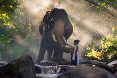 Stående av den härliga lantliga thai thai klänningen för kvinnakläder med elefanten i Chiang Mai Arkivfoton