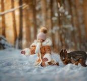 Stående av den härliga lilla flickan och valpen på vinterskogen royaltyfria bilder