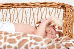 Stående av den härliga pojken som ligger i vide- korg Royaltyfria Foton