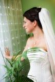 Stående av den härliga unga bruden royaltyfri bild